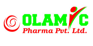 logo-olamic